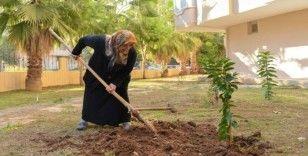 Kızı için her yıl fidan diken anneye Büyükşehir'den destek