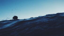 Manş Denizi'ni yüzerek geçen ilk Türk Kadını