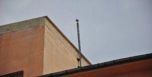 Okulun paratoner kablolarını söküp yakarken yakalandılar