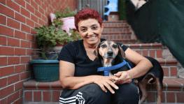 Kanserli köpek hem sağlığına hem yuvaya kavuştu