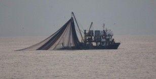 Balıkçılar bu sezon hedefledikleri avcılığın yarısına bile ulaşamadı