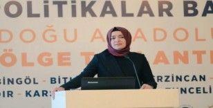 AK Parti Genel Başkan Yardımcısı Kaya Van'da