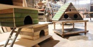 Büyükşehir'den kedi ve kuş evleri