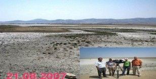 Seyfe Gölü Kuş Cennetini, 12 yıllık fotoğraf arşivi ile anlattı