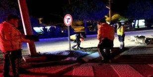 Motosiklet sürücüsü Çeşme'deki kazada öldü