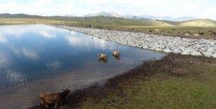Büyükşehir Belediyesi'nden gölet rekoru