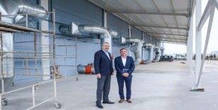 Karacabey'de Türkiye'nin en modern defne işleme tesisi için geri sayım sürüyor