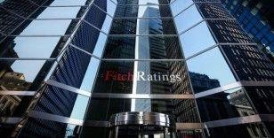 Fitch Ratings: Türkiye 2020'de daha fazla istikrar kazanabilecek