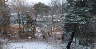 İsveç'te kar yağışı hayatı olumsuz etkiledi