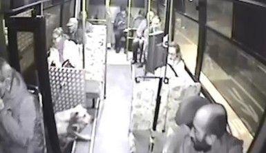 Halk otobüsüne binen sokak köpeği yolcuların maskotu oldu