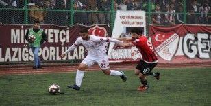 TFF 2. Lig: Elazığspor: 3 - Vanspor: 1