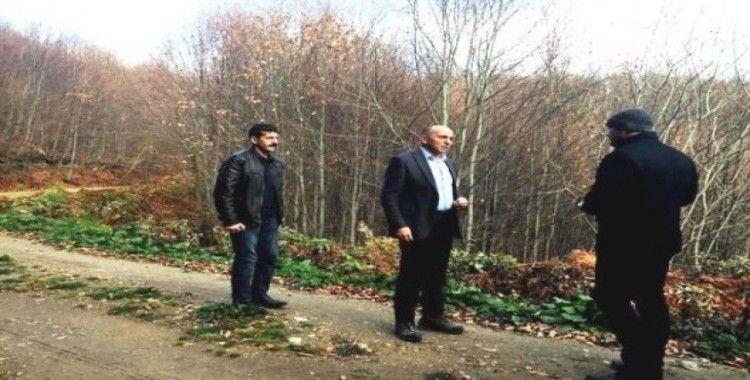 Müdür Keskin, kayın ormanlarında incelemelerde bulundu