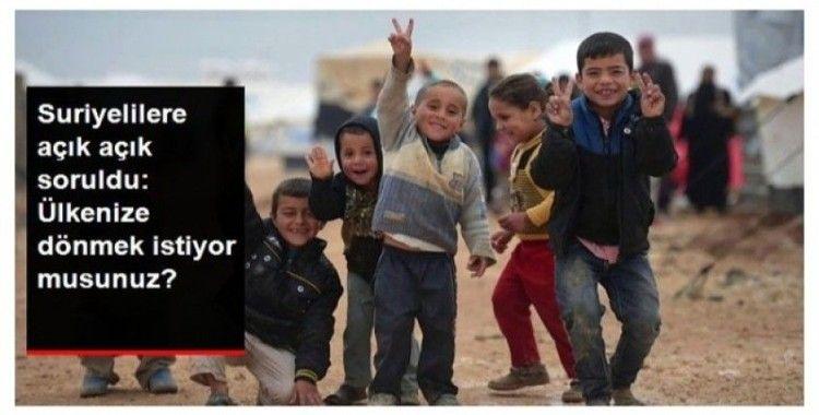 Suriyeliler ülkelerine dönmek istiyor mu? Çarpıcı sonuçlar!