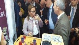Cumhurbaşkanı Yardımcısı Oktay ve Bakan Pekcan'dan Arapgir standına ziyaret