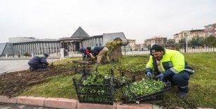 Malatya'da çiçek dikim çalışmalarına başlandı