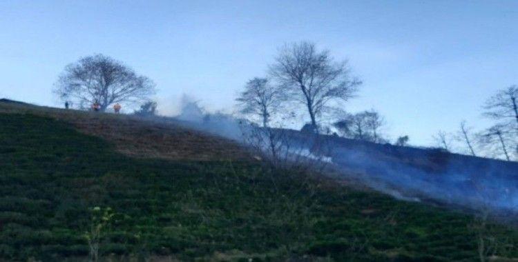 Artvin'de çaylık alanda yangın çıktı