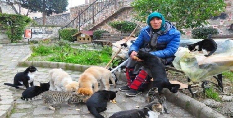 Hayatını hiçe saydı, tek derdi kendini adadığı sokak hayvanları