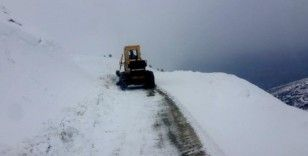 Malatya'da 15 kırsal mahalle yolu kardan kapandı