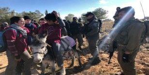 İsrail güçleri, Filistinlilerin zeytin fidanlarını dikmesini engelledi