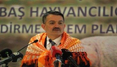 Bakan Pakdemirli'den sürü yöneticisi desteği açıklaması