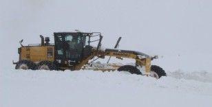 Bingöl'de kar  14 köy yolunu kapattı
