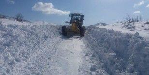 Bingöl'de kar 28 köy yolunu kapattı