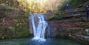 Sinop'ta tabiat parkları ziyaretçi sayılarında artış yaşandı