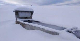 Taşova'da yüksek kesimler beyaza büründü