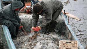 Yurdun Tepe Kayak Merkezi Soylu'nun katılımıyla açıldı