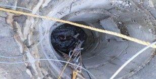 15 metrelik kuyuya düşen gebe inek kurtarıldı