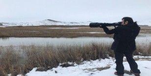 Sivas'ta kış ortası kuş sayımı yapıldı