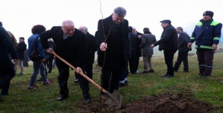 Sakaryalı gazeteciler hatıra ormanına 250 adet fidan dikti