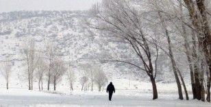 Bitlis'te dondurucu soğuklar
