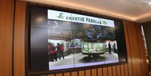 Türkiye'nin en ilginç egzotik parkı Sivas'ta kurulacak