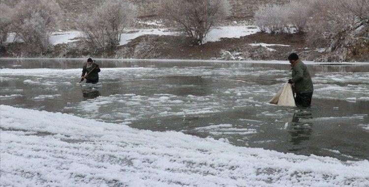 Murat Nehri'nin buz gibi suyunda ekmek mücadelesi
