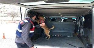 Siirt'te araması bulunan 4 kişi yakalandı