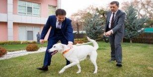 Milli Eğitim Bakanı Selçuk eğitimdeki durumu Batuhan Yaşar'a anlattı