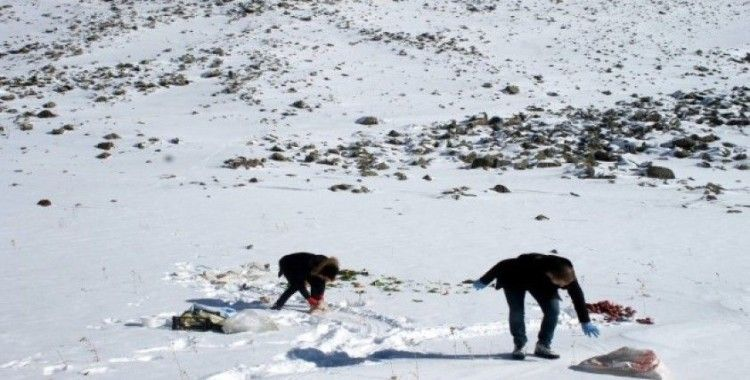 Av ve yaban hayvanları için doğaya yem bırakıldı