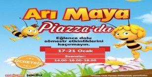 Arı Maya, sömestr tatilinde Piazza'da