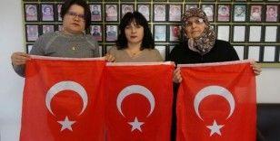 Çanakkaleli şehit ailelerinden Demirtaş'ın tiyatro oyununa giden isimlere sert tepki