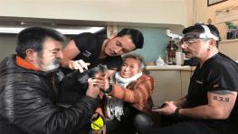 Bakan Pakdemirli'nin sahip çıktığı Görme yetisini kaybeden 'Bobo'nun' tedavisine başlandı