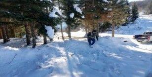 Kara kışta yaban hayatı unutulmadı