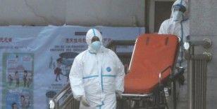 Çin'deki salgında ölü sayısı 6'ya çıktı
