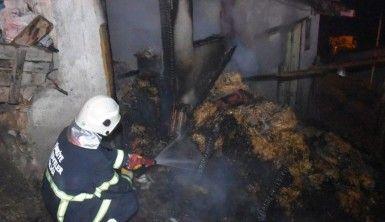 Kuzular diri diri yanmaktan son anda kurtarıldı