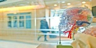 """Prof. Dr. Uğur Batı: """"Düzensiz gelir beyin sağlığını olumsuz etkiliyor"""""""