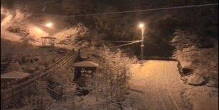 Rize'de aniden bastıran kar hayatı olumsuz etkiledi