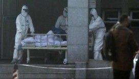 Çin'de korona virüsünün bilançosu artıyor: 41 ölü