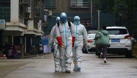 Çin'deki salgında ölenlerin sayısı 132'ye yükseldi