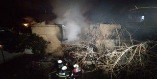 Adana'da 2 katlı ahşap ev yangında kül oldu