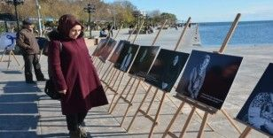 Sinop'ta Dünya Kanser Günü portre fotoğraf sergisi